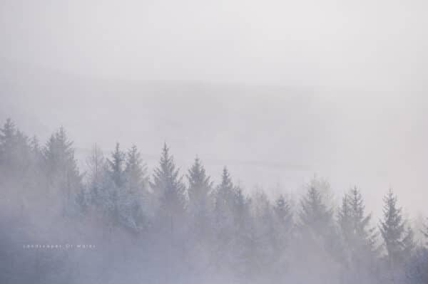 Winter Cold Morning Mist South Wales Valleys